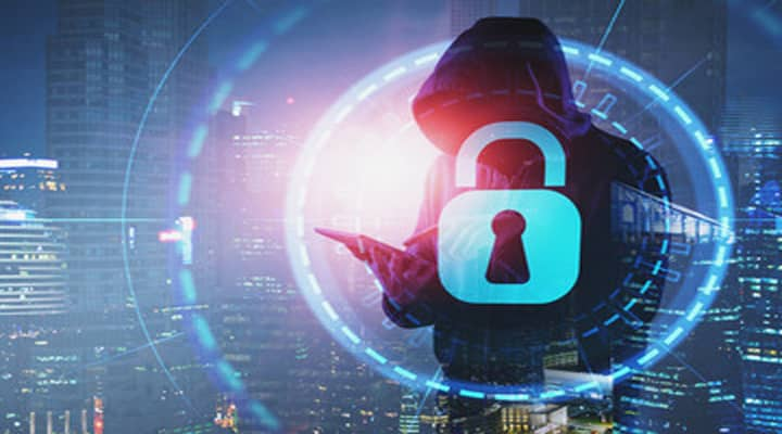 12 گروه از دسته بندی انواع مجرمین سایبری